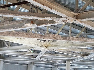 Manufacturing - Factory Indoor Ceiling