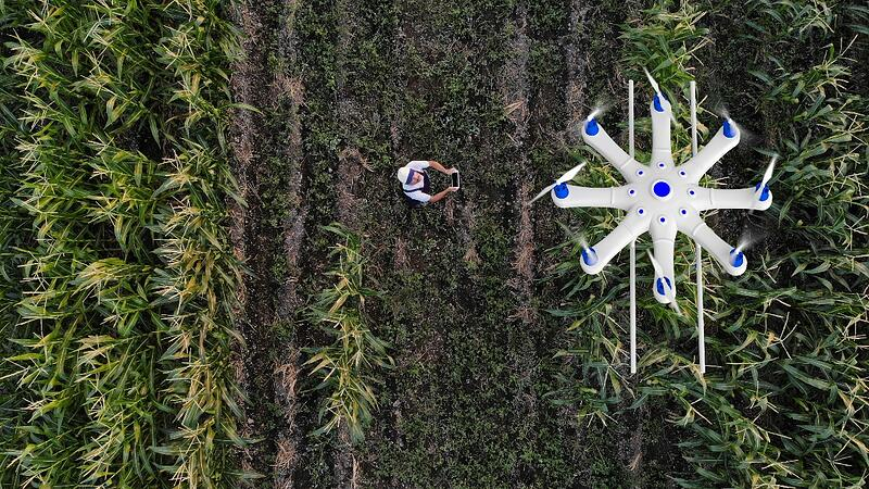 drone-inspections-agriculture